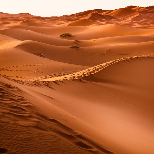 dawn-desert-dry-273935-53.jpg
