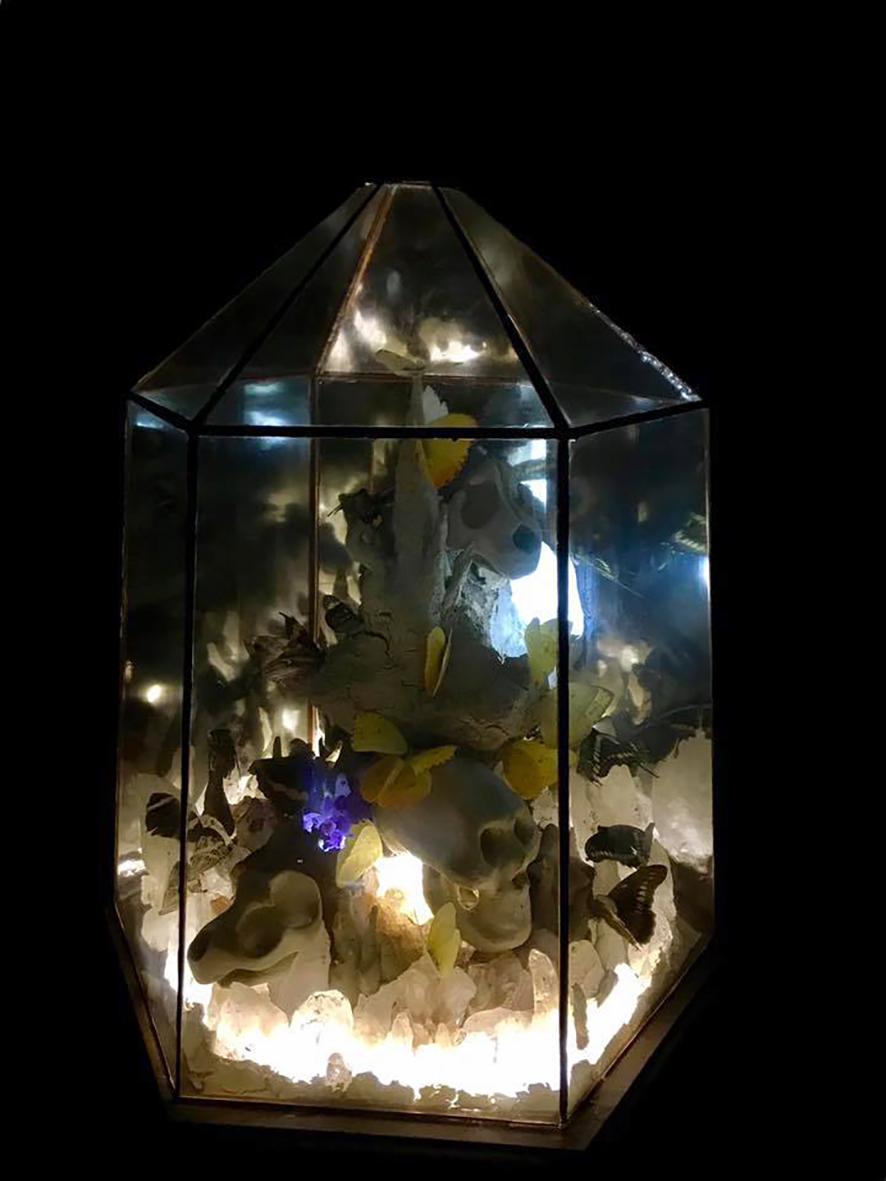 detalle de cúpulas de vidrio