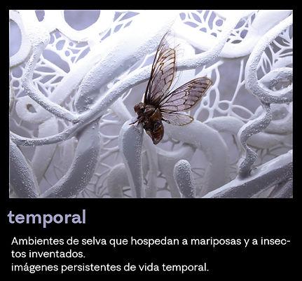 temporalbutton2.jpg