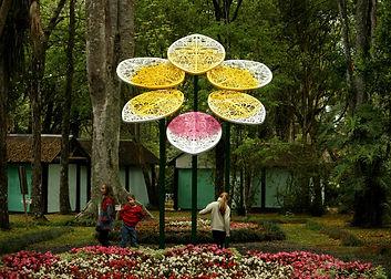 orquidea_05_paredes.jpg
