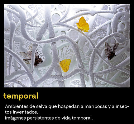 temporalbutton.jpg