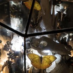 detalle de cúpula