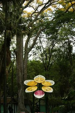 Orquídea eterna