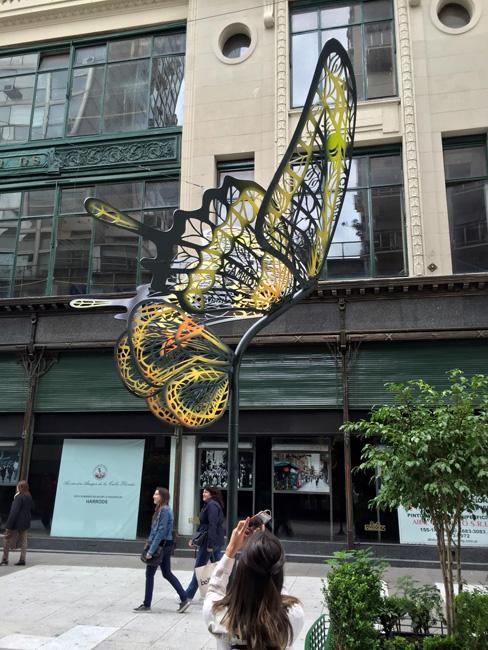 mariposas de calle florida