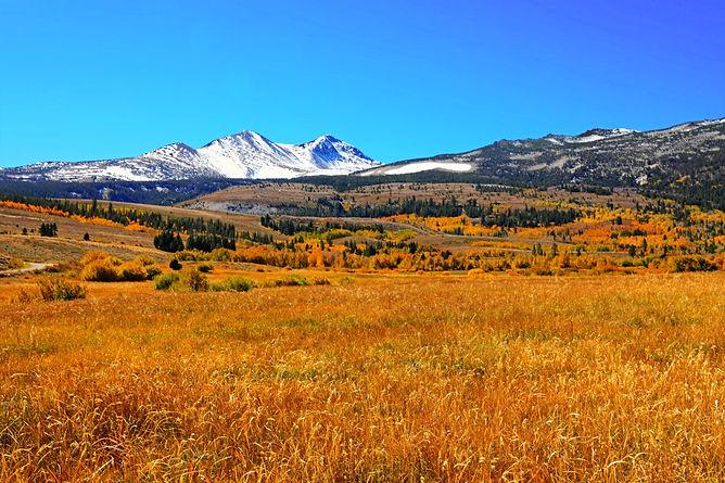 white-snow-mountain-near-grass-field-733