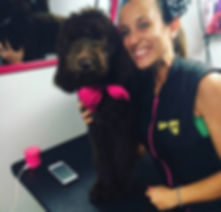 Mobile Dog grooming service Miami
