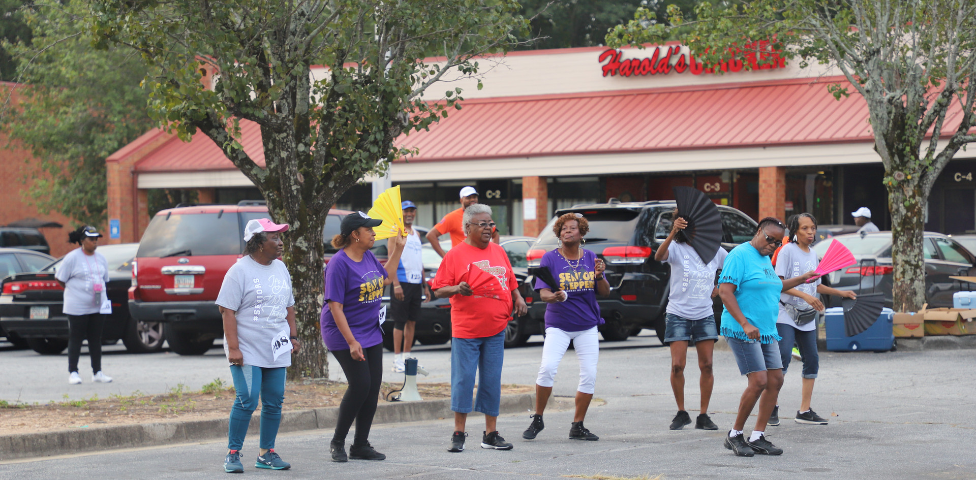 Senior Steppers from Tracey Wyatt Recreation Complex