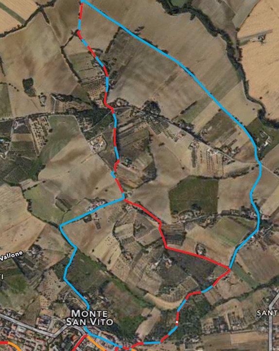 Terre del Lacrima: MTB trails