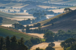 Gently Rolling Hills