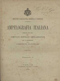 Ampelografia Italiana.jpeg