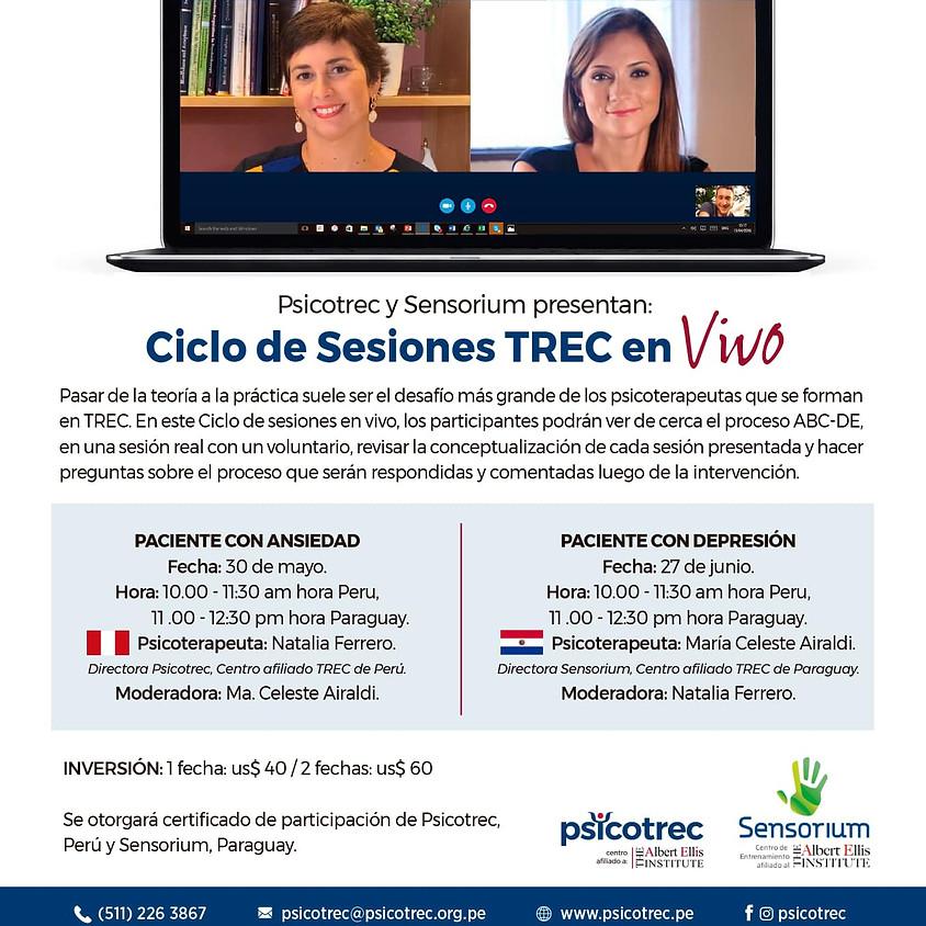 Ciclo de Sesiones TREC en VIVO