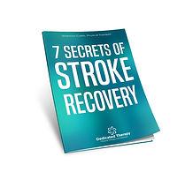 7 stroke secrets 3D.jpg