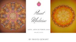 Planet Medicine II