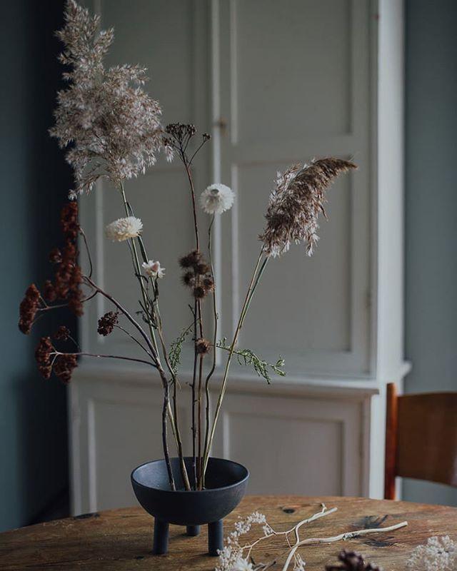 11 December • Ikebana__Det finns platser