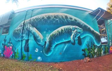 dugong mural wellington point school