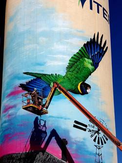 cowell silo mural
