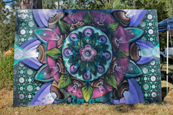 colab with shmick at Earth Freq