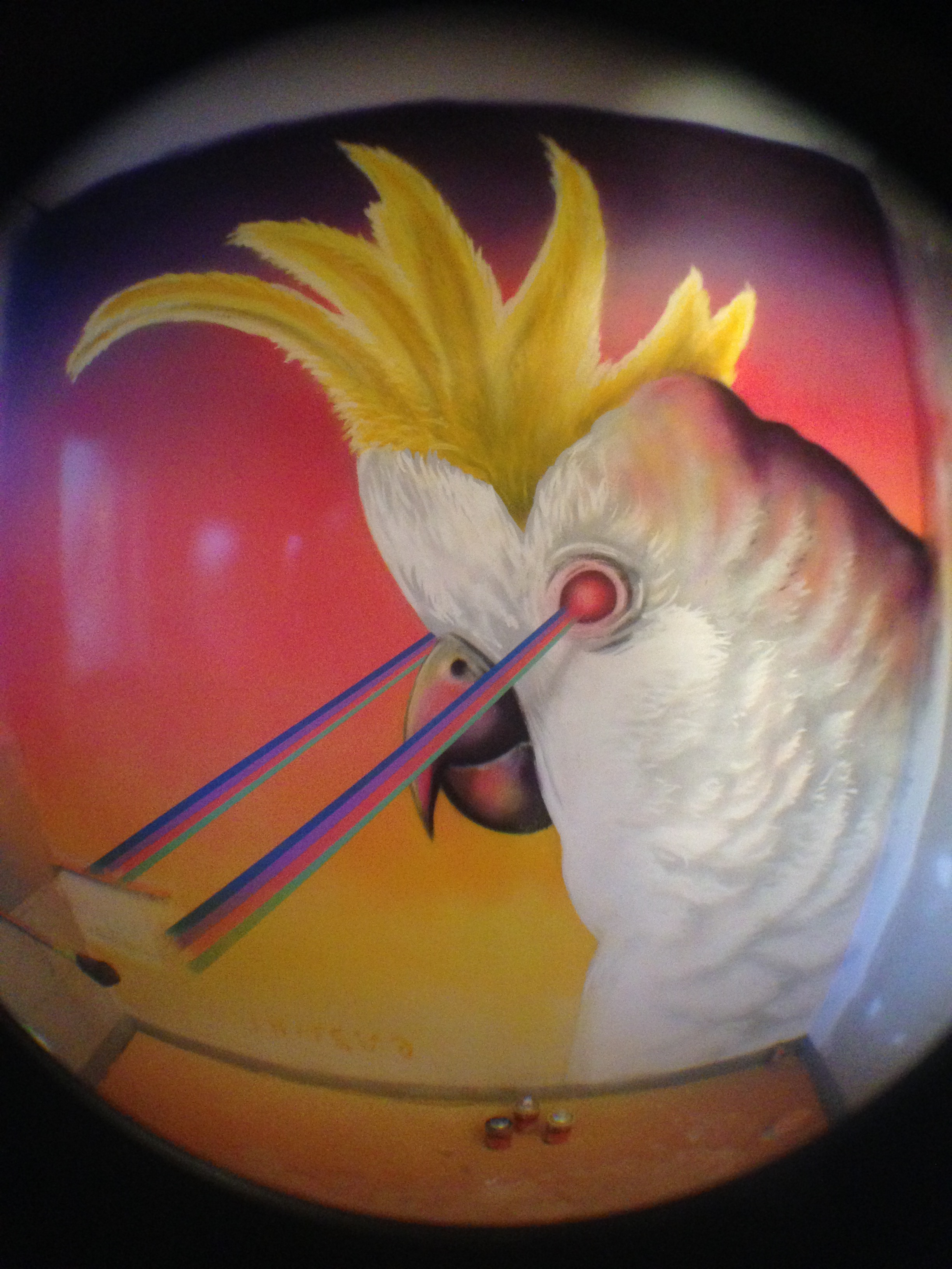 rainbow laser cockatoo mural