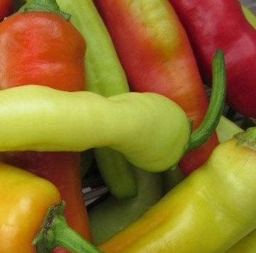 Hot Hungarian Pepper