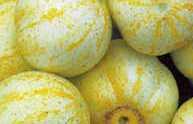 V0076C  Lemon (1894)