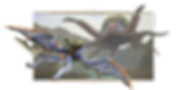 Game-Features-Image-02.png