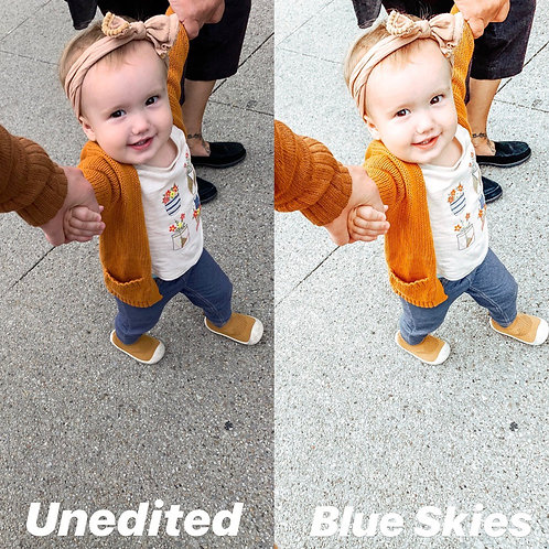 Sky Series #Unqualified Presets