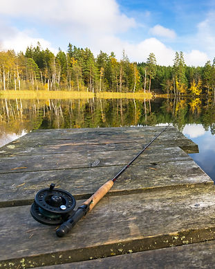 Autumn fly fishing in the lake.jpg