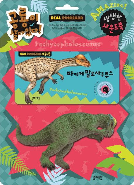 공룡이 살아있다  - 파키케팔로 사우루스