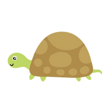turtle_01.png