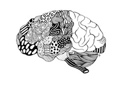 The Brain. Feel your cosmos