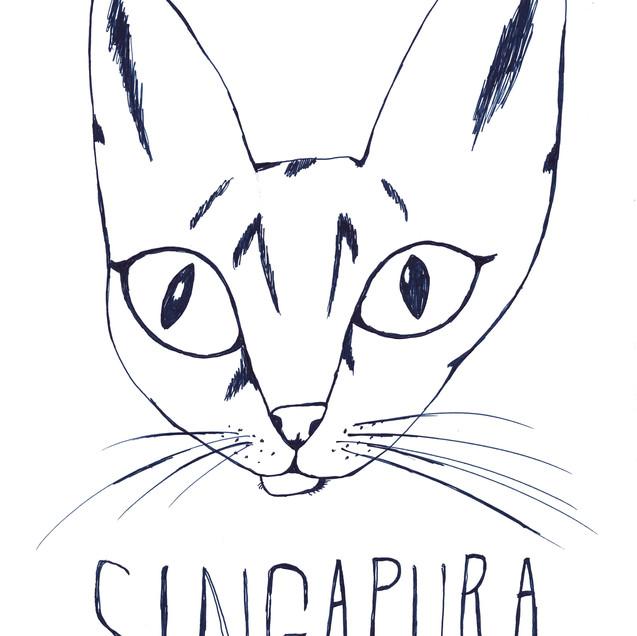 シンガプーラ