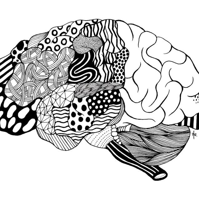 脳 あなたのコスモス