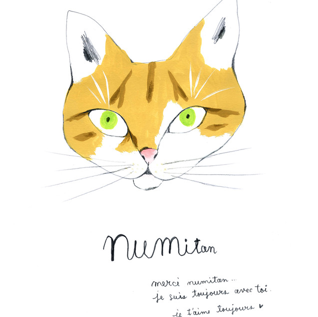 NUMItan
