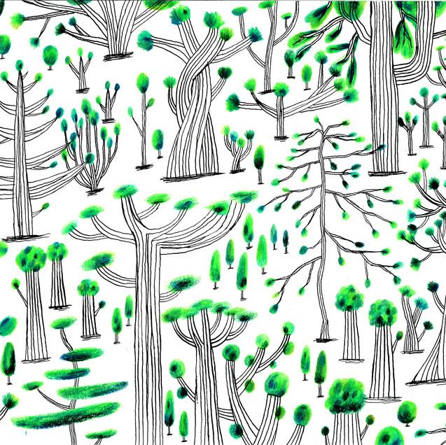 森のお祭り、精霊たち