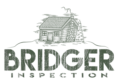 BRIDGER INSPECTION LOGO_transparent _sma