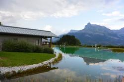 Rives du lac biotope