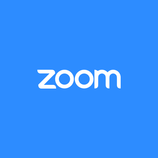Private Zoom Consulting