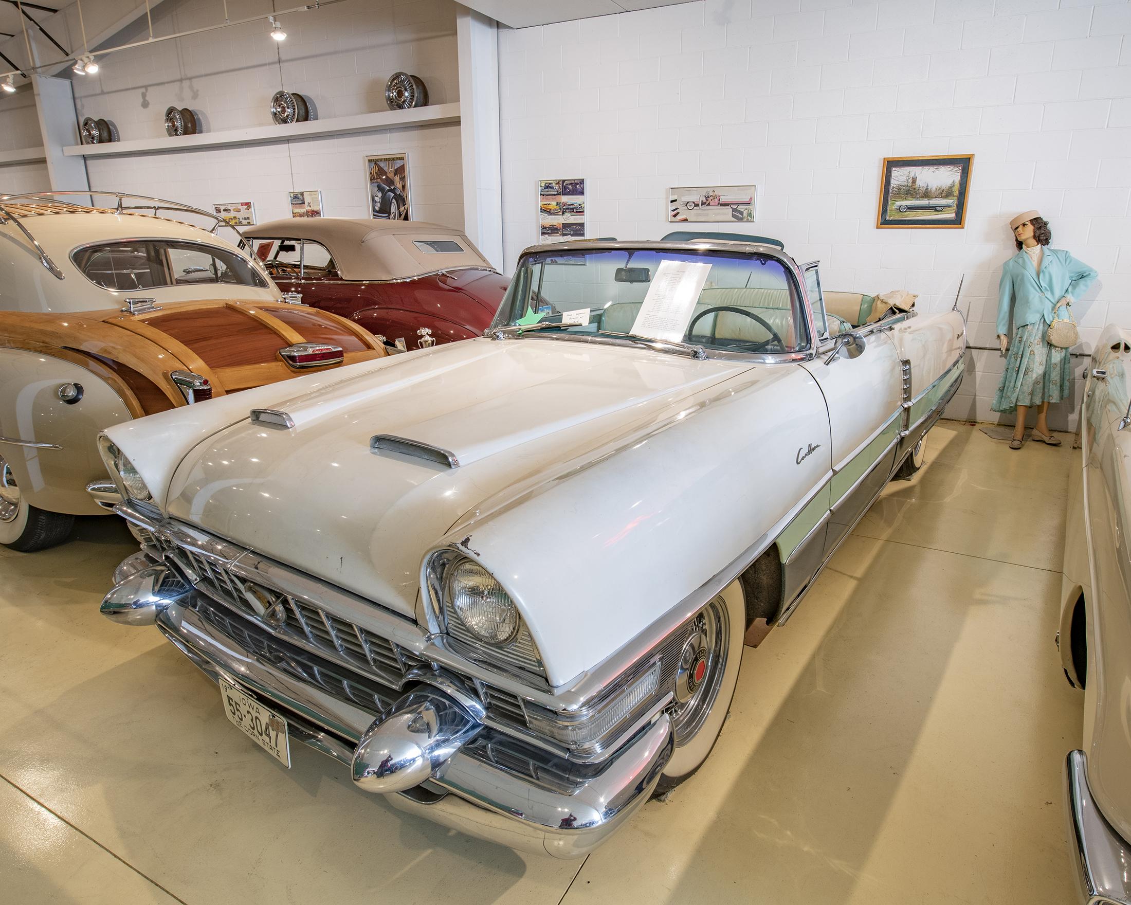 PackardCaribbean1955