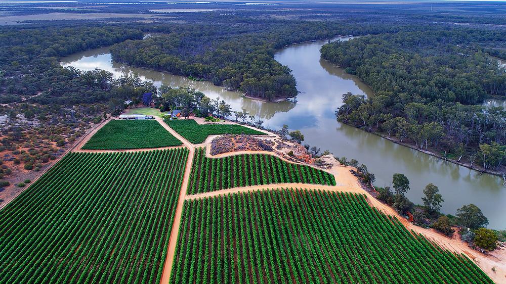 Horticulture plantation adjacent a river