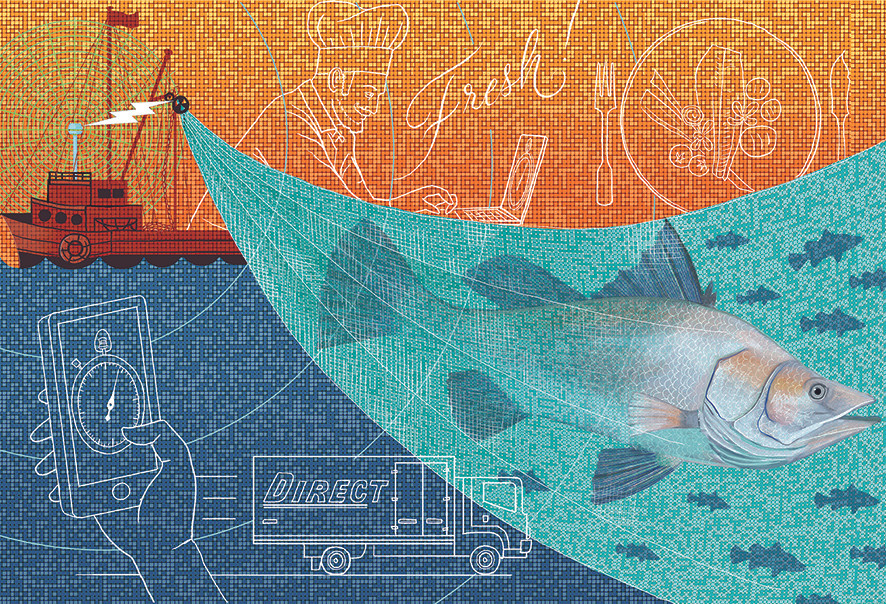Illustration depicting the digital marketing chain for the fisheries sector