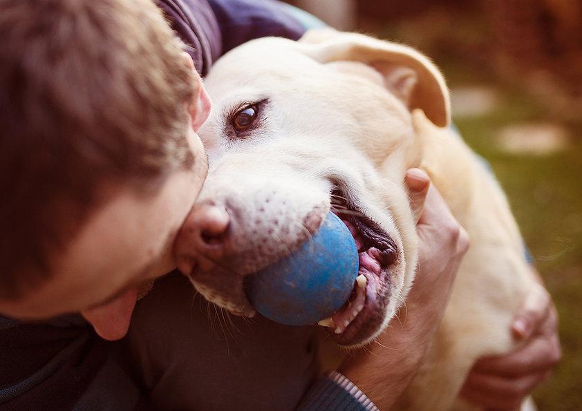 Best Dog Trainer & Dog Training Montreal