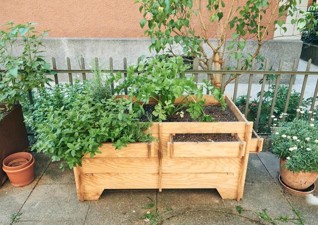 orticello hochbeet hochbeete urban gardening gärtchen oase urbangardening gemüse