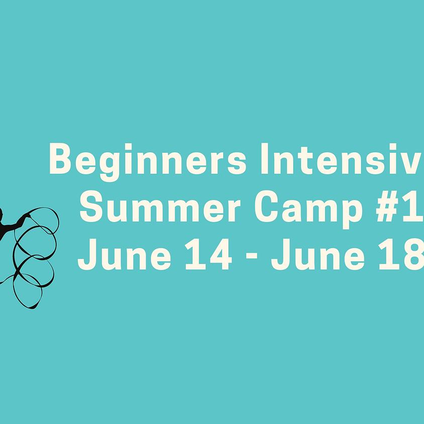 Beginners Intensive Camp #1: June 14 - June 18