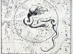 draco-uranogaphia-Johannes-Hevellius-169