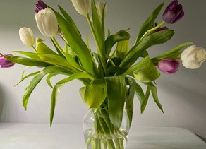 The Essence and Symbolism of Flowers