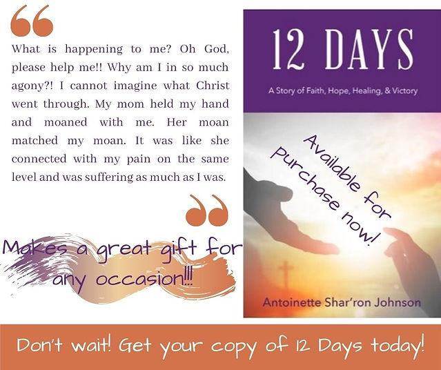 12 Days Book AdvertisementJPG.jpg