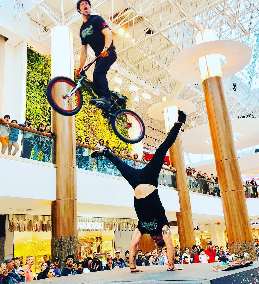 BMX FREESTYLE TEAM