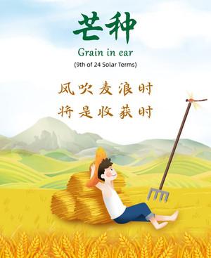 中医节气之养生-芒种   Health maintenance during Grain in ear Term between Jun 5th to 20nd