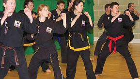 Adults practicing martial arts