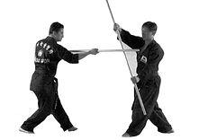 Kuk Sool Won Staff/Weapons